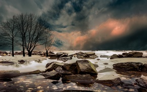Картинка зима, природа, Netherlands, Guelders, Overbetuwe