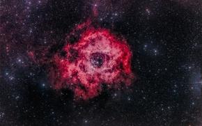 Обои в созвездии, Туманность Розетка, Единорог