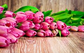 Картинка букет, тюльпаны, love, fresh, pink, flowers, romantic, tulips, gift, розовые тюльпаны