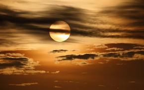 Картинка небо, природа, облока