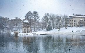 Картинка зима, снег, Германия, ФРГ, Freiburg, Freiburg im Breisgau