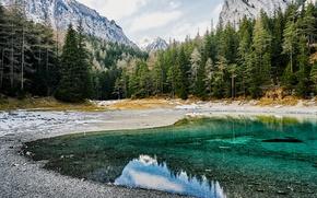 Картинка лес, деревья, горы, озеро, скалы, Австрия