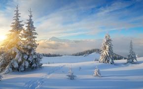 Картинка зима, лес, небо, солнце, облака, лучи, снег, пейзаж, горы, холмы, лыжня, красота, ели, склон, деревня, ...
