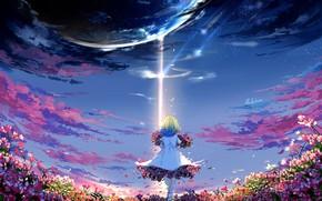 Картинка цветы, планета, аниме, арт, девочка