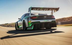Картинка Bentley, Continental, гоночное авто, вид сзади, GT3, 2018