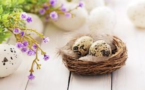 Картинка цветы, перья, Пасха, гнездо, happy, flowers, spring, Easter, eggs, decoration, яйца крашеные