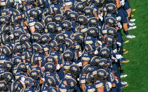 Картинка спорт, американский футбол, игроки, Pitt vs Penn State