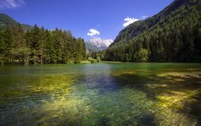 Картинка лес, горы, озеро, рябь на воде, Словения, Slovenia, Planšarsko jezero, Планшарско озеро
