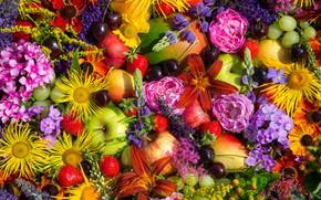 Картинка цветы, ягоды, фрукты