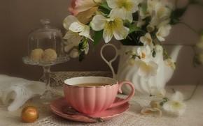 Картинка цветы, чай, розы, конфеты, чашка, натюрморт, альстрёмерия, кофейник