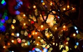 Картинка огни, праздник, гирлядна