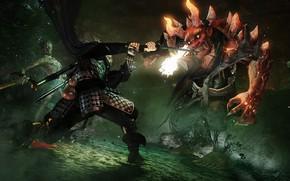 Картинка game, devil, weapon, katana, ken, blade, samurai, asian, bow, japanese, arrow, oriental, asiatic, chain, spear, ...