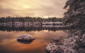 Картинка зима, лес, вода, снег, деревья, отражение, Финляндия