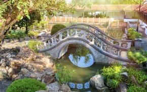 Картинка солнце, мост, пруд, камни, China, Гонконг, Китай, bridges, stones, Hong Kong, parks, Chi Lin