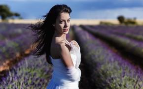 Картинка поле, взгляд, девушка, модель, платье, лаванда, боке, Lucia Tome