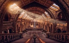 Обои музей, свет, скелет, холл