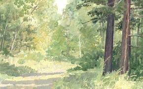 Картинка пейзаж, тропинка, В лесу, Айбек Бегалин, 2005г