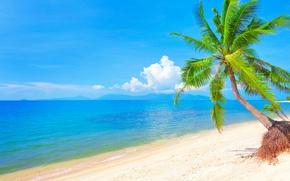 Обои солнце, tropical, summer, beach, sand, море, песок, sea, пляж, palms, берег, island, paradise, пальмы