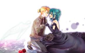 Картинка девушка, романтика, яблоки, роза, аниме, арт, парень, Vocaloid, Вокалоид