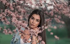 Картинка взгляд, девушка, волосы, весна, цветение, Рафаэлла, Andrea Carretta