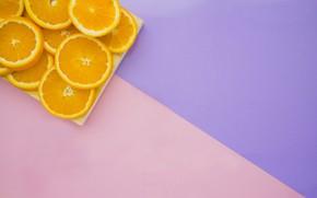 Картинка фиолетовый, фон, розовый, апельсины, цитрусовые