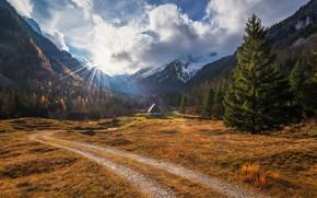 Картинка дорога, свет, горы, утро