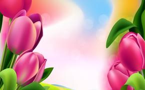 Картинка цветы, рисунок, тюльпаны, яркость