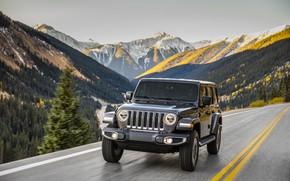 Обои лес, тёмно-серый, Jeep, движение, 2018, дорога, деревья, разметка, Wrangler Sahara, горы