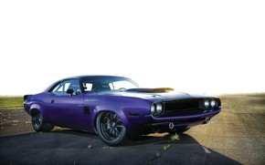 Картинка Dodge, Challenger, Purple, 1970, Custom, Race Muscle Car