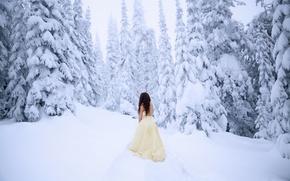 Картинка холод, лес, девушка, снег, платье, Lichon
