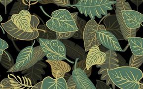 Обои листья, фон, текстура