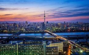 Обои ночь, огни, Япония, Токио, Tokyo, мегаполис