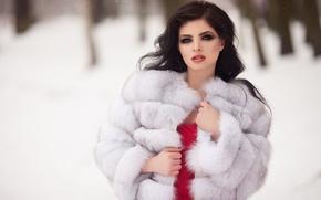 Картинка зима, снег, деревья, снежинки, модель, портрет, макияж, платье, брюнетка, прическа, шуба, белая, мех, красотка, в …