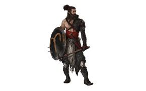Картинка оружие, тело, молот, воин, щит