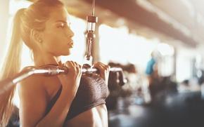 Обои female, workout, fitness