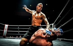 Обои MMA, Fight, Ground