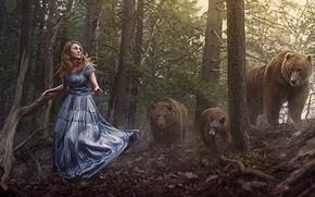 Обои лес, медведи, девушка