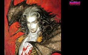 Картинка кровь, крылья, клыки, вампир, летучая мышь, длинные волосы, art, castlevania, ayami kojima, высокий воротник, maxim …