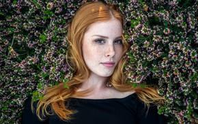 Картинка взгляд, цветы, модель, портрет, макияж, прическа, веснушки, рыжеволосая, в черном, Lenka, конопатая, Viktor Fryblík