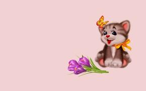 Обои цветы, фон, настроение, праздник, подарок, бабочка, рисунок, минимализм, арт, котёнок, бантик, детская