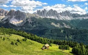 Картинка зелень, лес, небо, трава, облака, деревья, горы, скалы, склон, Альпы, Италия, Bressanone