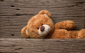 Обои игрушка, медведь, мишка, wood, teddy bear, cute