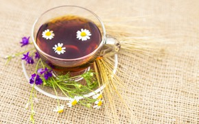 Картинка цветы, чай, чашка, напиток