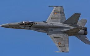 Обои небо, синь, F/A-18 Hornet, боевой самолёт