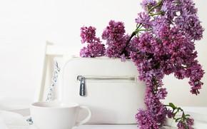 Картинка чашка, сумка, сирень, cup, bag, lilac