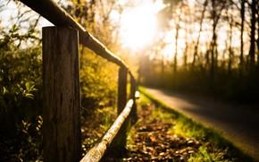 Картинка дорога, свет, забор