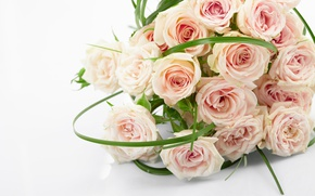 Картинка розы, букет, pink, flowers, roses