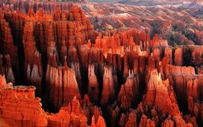 Обои каньон, скалы, Red City, рассвет