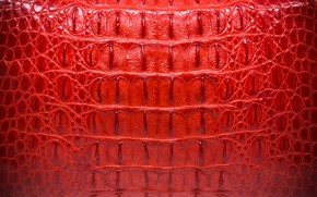Картинка красный, фон, кожа, крокодил, red, texture, leather, crocodile