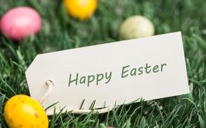 Картинка Трава, Пасха, Яйца, Праздник, Открытка